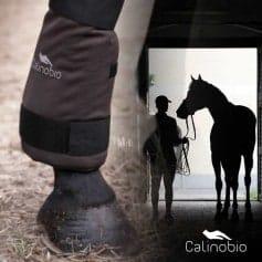 Calinobio PADD