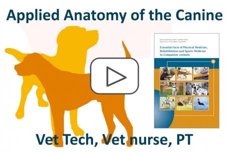 """Certified Applied Anatomy Course """"Priya's Anatomy"""""""
